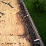 Damage to Roof Sheathing from Ice Damming